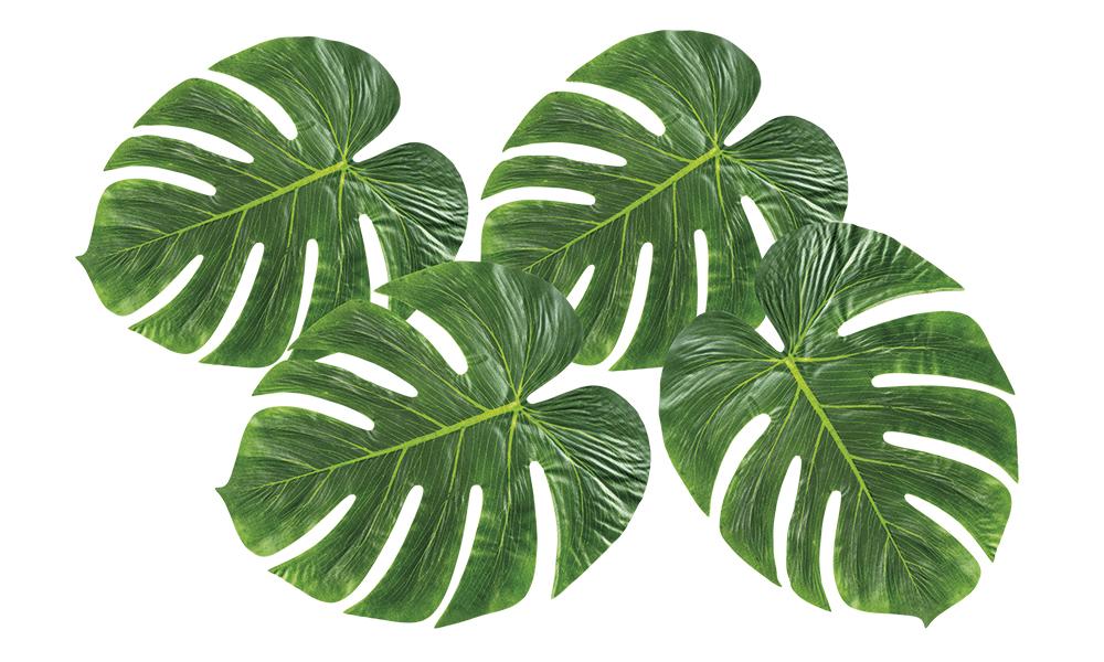 hawaiji somisteet