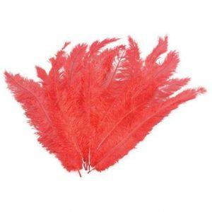 strutsin sulka punainen